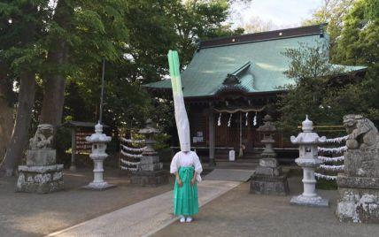 """Дивний ритуал: у Японії священниця """"перетворюється на зелену цибулю"""", щоб залучити людей до храму"""