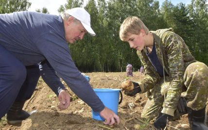 Україна стала найбільшим постачальником картоплі до Білорусі