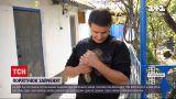 Новини України: в Херсонській області з палаючого поля рятувальники забрали двох маленьких зайченят