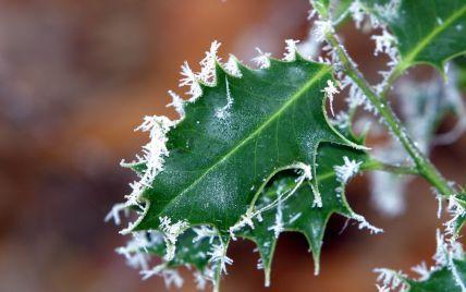 До України йдуть нічні заморозки: коли та яким регіонам готуватися до мінусової температури