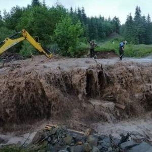 """У Закарпатській області туристи """"застрягли"""" у лісі через розмиту дорогу після злив: фото негоди"""