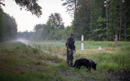Латвія і Литва посилили охорону на кордоні з Білоруссю: що сталося
