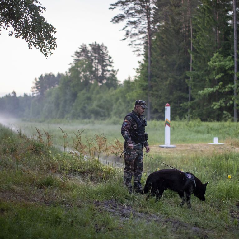 Литва думает построить забор вдоль границы с Беларусью из-за потока нелегалов