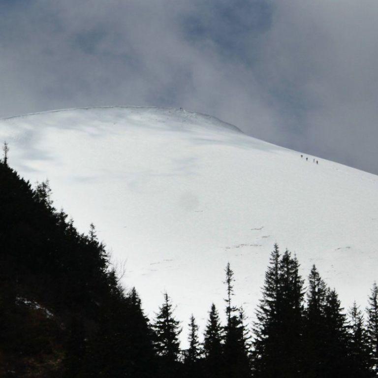 Спасатели предупредили о значительной лавинной опасности в Карпатах