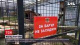 Новости Украины: мужчину, на которого напала пантера, прооперировали - угрозы для жизни нет