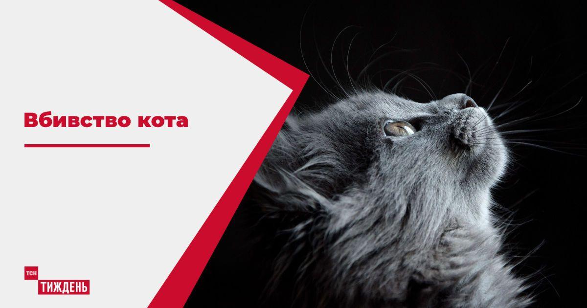 У Житомирській області мисливець жорстоко вбив кота