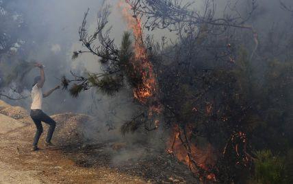 Лесной пожар на севере Ливана: выгорели более 200 гектаров сосен и дубов, погиб подросток