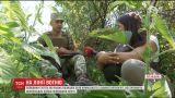 Фронтовые сводки: боевики обстреливают Крымское