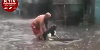 Вынес из воды на руках: в Киеве во время ливня мужчина спас травмированную собаку (видео)