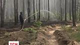 В Киеве горит лес, район ДВРЗ затянуло дымом
