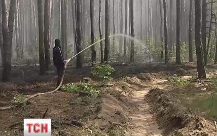 Спасатели потушили лесной пожар, из-за которого ДВРЗ погрузился в дым