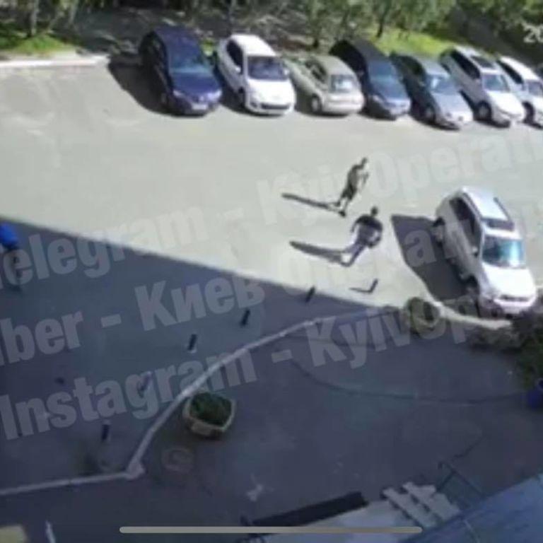 Мог заразить бешенством: в Киеве ротвейлер разорвал щенка и укусил 16-летнего парня