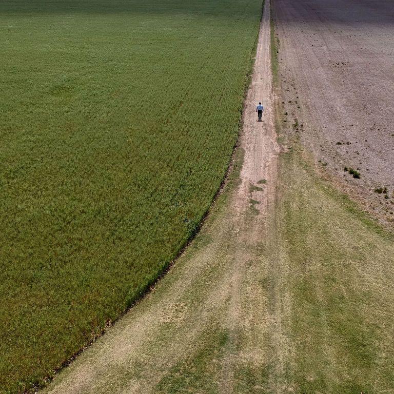Шмигаль анонсував зростання ціни на землю після запуску реформи
