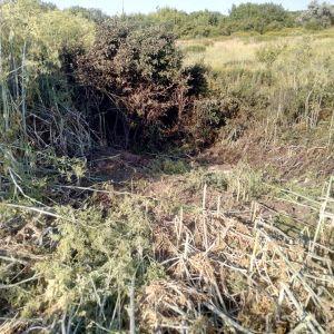 З'явились фото з місця обстрілу, який вбив 80-річну мешканку Зайцевого