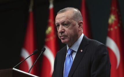 Лісові пожежі в Туреччині: Ердоган оголосив постраждалі райони зонами лиха