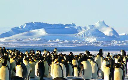 Украина приобретет ледокол для экспедиций в Антарктиду