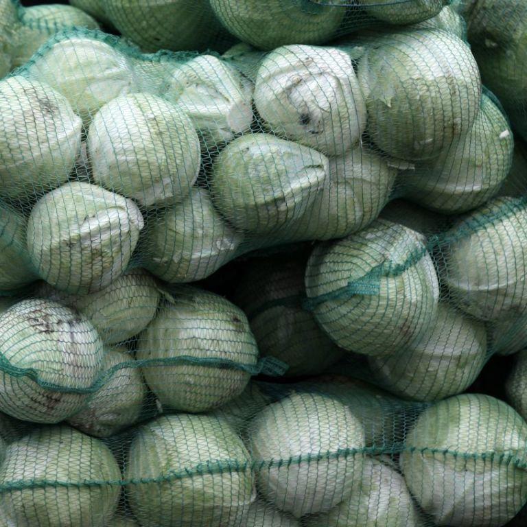 В Украине цены на белокочанную капусту пошли вверх: сколько стоит овощ с борщевого набора