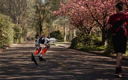 В американском Орегоне двуногий робот пробежал 5 километров