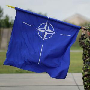 Вступ України до НАТО: як до нас ставляться союзники, чим допомагають та чи готові прийняти в Альянсі