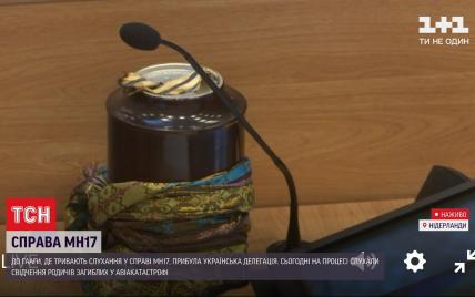 В Нидерландах в суде стартовали слушания родных жертв катастрофы МН17: как прошел первый день