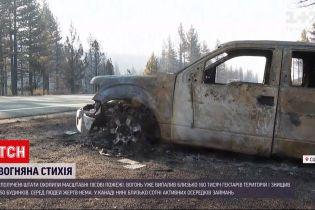 Новости мира: в США огонь уничтожил 160 тысяч гектаров насаждений