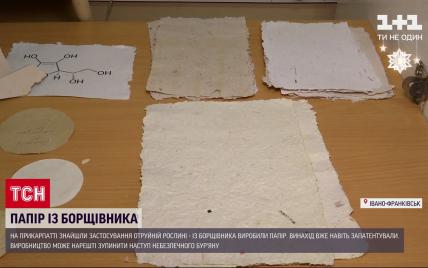 На Прикарпатті науковці почали виготовляти папір з отруйного борщівника
