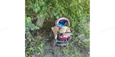 Під Запоріжжям місцевих мешканців налякав дитячий візок із трупом тварини
