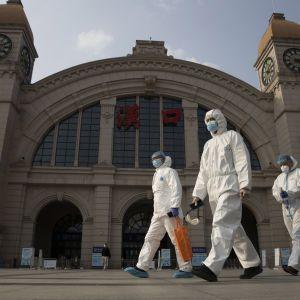 Конгресмени США заявили про докази витоку коронавірусу з лабораторії в Ухані: доповідь