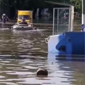 Затопленные улицы, поваленные деревья и заиленные дороги: что происходит после потопа в Одессе (видео)