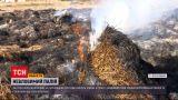 Новости Украины: в Черниговской области неизвестный сжег десяток хлевов и 20 тоннн сена