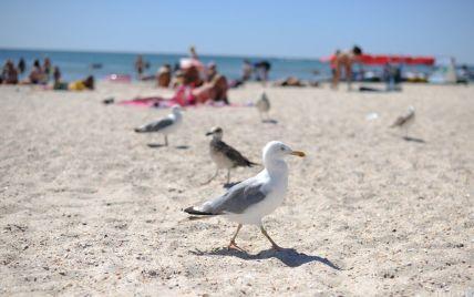 Подготовка к курортному сезону: в Одессе стартовала большая уборка пляжей