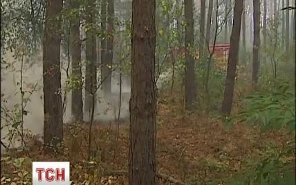 Вблизи Броваров горит 5 гектаров леса