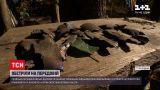 Новини з фронту: окупанти влаштували масовані атаки з використанням артилерійських снарядів