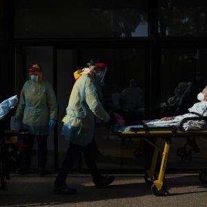 Пандемия коронавируса не только не закончилась, но и ускорилась — ВОЗ