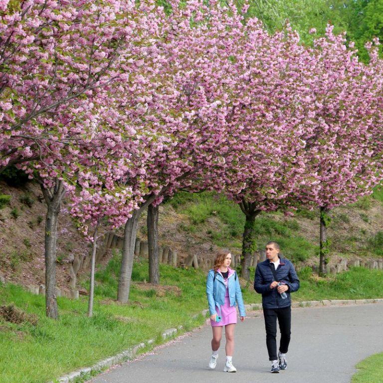 Народні прикмети, обряди і звичаї 16 травня