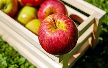 Эксперты прогнозируют высокие цены на яблоки: почему