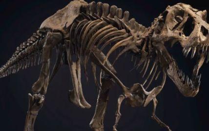 Динозавр за шесть миллионов: знаменитого Стена продадут с молотка