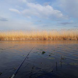 25-річний чоловік втопився у кар'єрі в Рівненській області