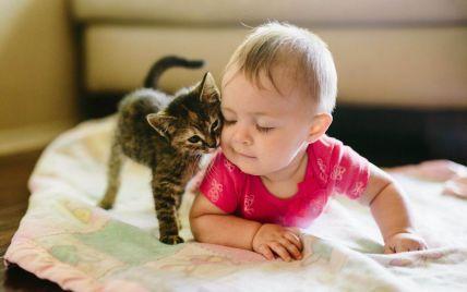 Жестокость к животным — угроза для людей: в UAnimals напомнили о взаимосвязи и рассказали, что делать родителям детей