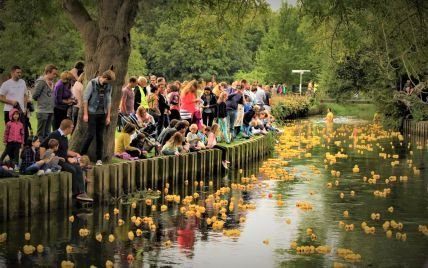 Понад 4 тисячі іграшок на воді: у британському Кентербері відбувся щорічний заплив гумових качечок