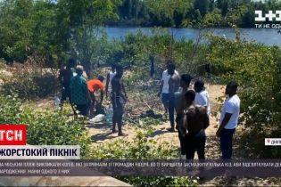 Новости Украины: в Днепре 11 граждан Нигерии резали и жарили коз на городском пляже