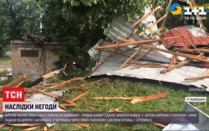 Деревья с корнями падали на авто, а шифер сносило, как листы бумаги: запад Украины накрыла непогода