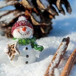 Снег и морозы будут меняться оттепелью: синоптик дал прогноз погоды на Новый год 2021