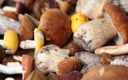Как приготовить белые грибы: советы и рецепт Андрея Величко