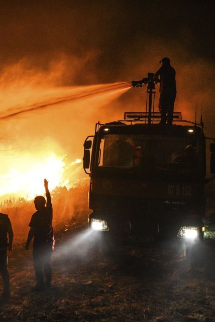 Таких лесных пожаров здесь не помнят: какая сейчас ситуация в охваченной огнем Турции