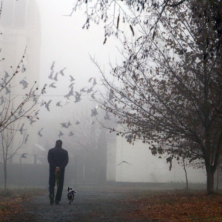 Чому Київ опинився у топ-10 найбрудніших міст світу: відповідь еколога