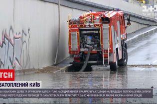 Новости Украины: в Киеве внезапный ливень испортил асфальт и повалил 150 деревьев