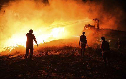 Пожары в Турции: ответственность за поджоги взяла на себя курдская организация