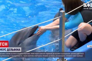Новини України: мама постраждалого в дельфінарії хлопчика визнала свою провину