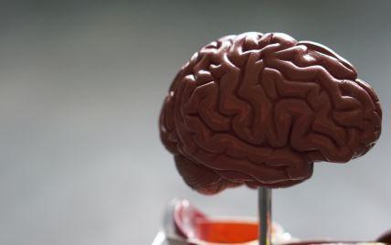 """Людина могла """"перепрофілювати"""" ключову область мозку, коли навчилася читати - вчені"""